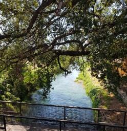 Paestum fiume.jpg